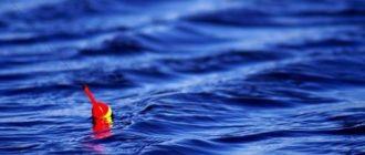 Советы ловли на штекерную и поплавочную снасть