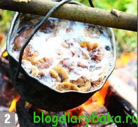 Филе берша с опятами на углях в фольге