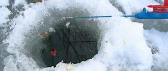 Ловля рыбы на мотыля  в глухозимье