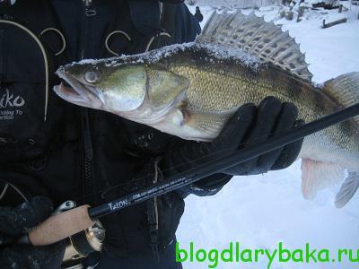 Как выбрать спиннинг для ловли щуки на малых реках