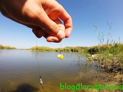 Как подобрать рыболовный крючок для различных приманок