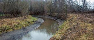 Выбор места и насадки для ловли плотвы в малых реках
