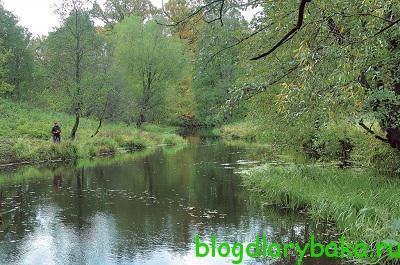 blog-ribalka.ru