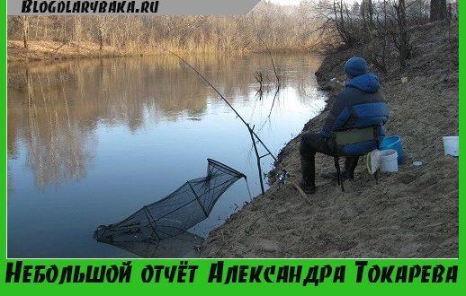 Небольшой отчёт Александра Токарева об рыбной ловле на фидер