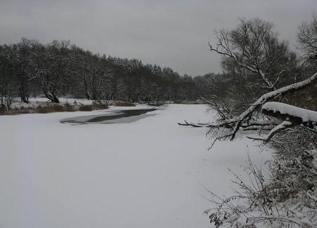 Ловля голавля зимой на открытой воде